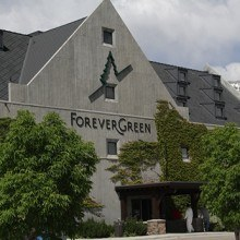 is forevergreen international a scam