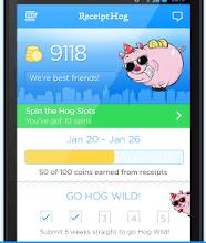 Receipt Hog Review