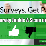 Survey Junkie Review Overview