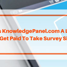 KnowledgePanel Review