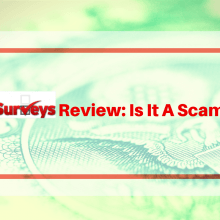Dollar Surveys Review