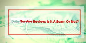 Dollar Surveys Review