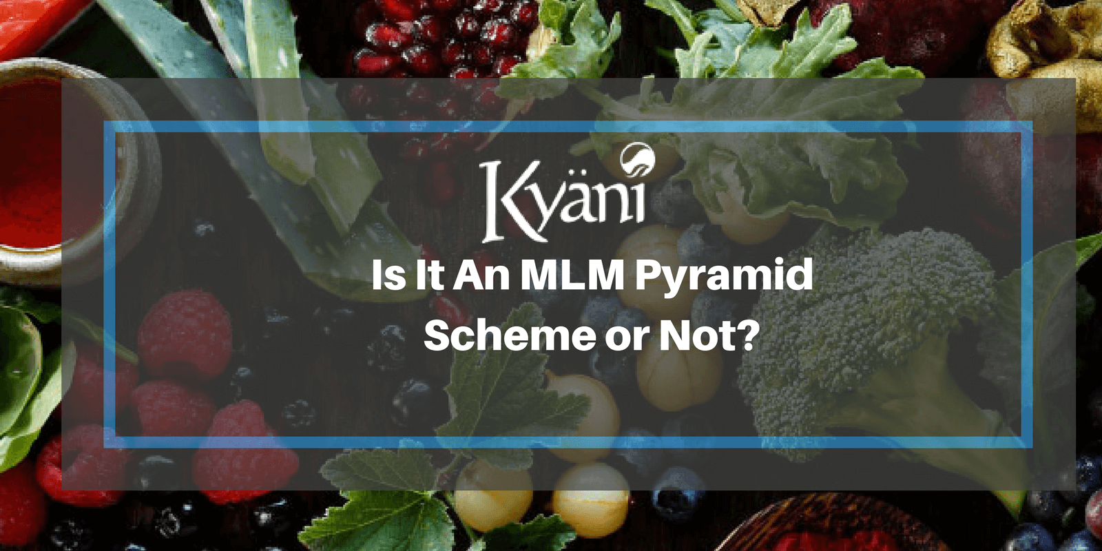 Kyani Review Is It Another Mlm Pyramid Scheme Or Actually Legit