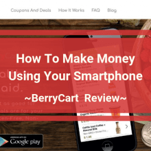 BerryCart Review