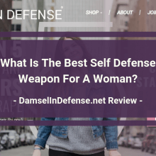 Damsel In Defense Review